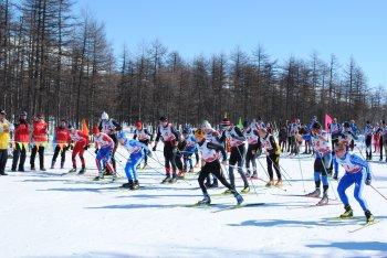 """""""Соколовский марафон - 2012"""""""